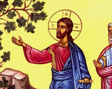 Reflexão para o 3º Domingo da Quaresma: Sejamos frutos da conversão