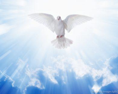 """Reflexão para o VI Domingo da Páscoa: """"A Minha Paz Vos Dou"""""""