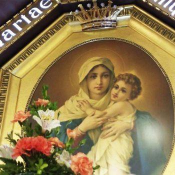 Envie Flores de Maio ao Santuário Original