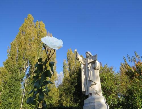 Santa Teresinha: Uma inspiração para a Filialidade Heroica